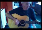Washburn D25-12 12 string acoustic (1980)