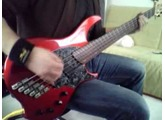 Life To Lifeless | Killswitch Engage Bass Cover | Dingwall Combustion 5