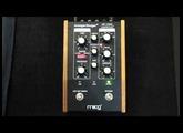 Moogerfooger MF-108M Cluster Flux (Demo)