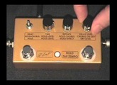 ZCAT - HOLD - DELAY - CHORUS Pedal