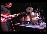 The Jimmy Chamberlin Complex - Cranes Of Prey
