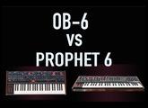 OB-6 vs Prophet 6