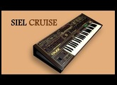 SIEL CRUISE Analog Synthesizer 1979 | HD DEMO