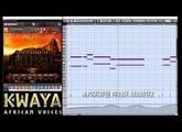 Best Service - KWAYA Demo 1