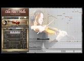 Best Service - Chris Hein Solo Violin - Demo Czardas