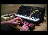 Korg MS20 and SQ-1 improvisation
