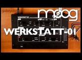 Moog Werkstatt-01 Analogue Synth Demo