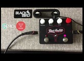 Foxpedal Slow Hound Overdrive demo