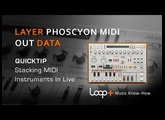 D16 Phoscyon Tutorial - Send MIDI Output To Another Plugin - Loop+ Quick Tip