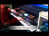 Irlande Vangelis'Sound Demo on Jupiter 80, programmed by Studioliv