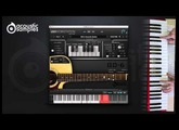 GD-6 acoustic guitar : patterns