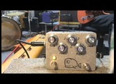 Hungry Robot Pedals --- The Moby Dick Delay