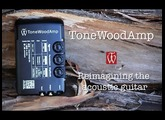 Introduction to the ToneWoodAmp