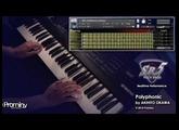 Prominy SR5 Rock Bass demo - Polyphonic