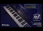 Prominy SR5 Rock Bass demo - Auto Sustain