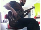 Mellowship in B major bass Cover