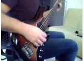 Enlightened To Extinction | Kingdom Of Sorrow Bass cover | Fender Roscoe Beck 5