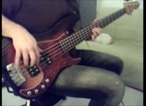 A Little Funk in Your Pocket | The Brand New Heavies Bass Cover
