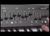 BEHRINGER Synth  Vol  9 ENV