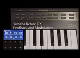 Yamaha Reface DX Tutorial - Part 3: Modulating with Feedback