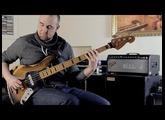 FENDER BASSMAN 100T BASS AMP | BassTheWorld.com