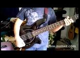 Music Man Bongo 4