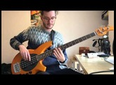 The Dali Thundering Concept - Phoenix (bass cover)