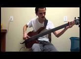 Cort B5FL Fretless Bass Review