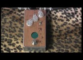 Anasounds UTOPIA Tape Echo delay pedal demo with MJT Strat