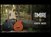 Introducing the new Spector Timbre Acoustic Bass