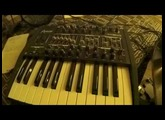"Minibrute ""Ronronnement"" (Mark Bonn)"