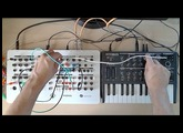 MicroBrute and PHENOL CV Connection