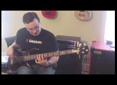 Ultimate Basses: Spector NS-2 Bass