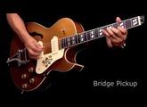Epiphone Limited Edition ES-295 Premium Guitar Demo