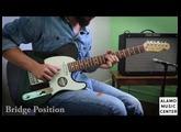 Fender Elite Telecaster vs Fender American Standard Telecaster