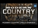 Modern Country Vol  2 - Multi Format