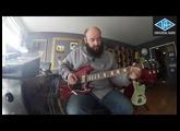 Thermionic Culture Vulture par Guitare Obsession
