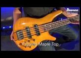 Ibanez SR700AM Bass Guitar Review - yandasmusic.com