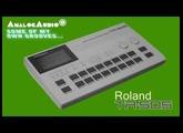 ROLAND TR-505 Vintage Drum Machine 1986 | HD DEMO