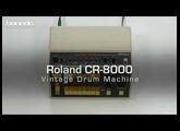 Roland CR 8000 - Drum Machine Sound-Demo