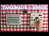MFB TANZMAUS + ELEKTRON ANALOG DRIVE ~ Will They Pair? Ep.03