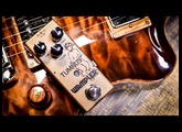 Wampler Tumnus - Review (watch in 4K if you can)