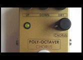 Z.Cat Poly-Octaver Demo