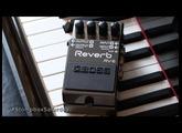 Stompbox Saturday No.68 : Boss RV-6 Reverb (Pedal Demo & Review)