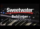 Behringer DeepMind 12 Synthesizer Demo