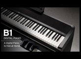 Korg B1: A Digital Piano To Feel At Home