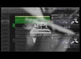 Muletone Audio - Brazilian Series: Timbal - Overview