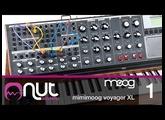 Minimoog Voyager XL Tutorial pt 1/2 con Enrico Cosimi @ Nut Academy