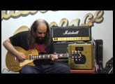Gibson Les Paul Deluxe 1973 + Swart Space Tone