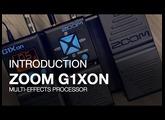 G1Xon: Introduction